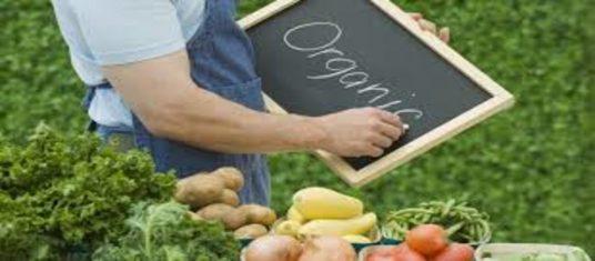 Вимоги до виробництва органічної продукції наблизили до євростандартів